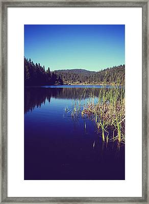Love's What We'll Remember Framed Print by Laurie Search