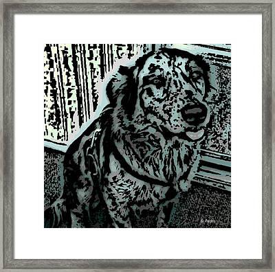 Loyalty Framed Print by George Pedro