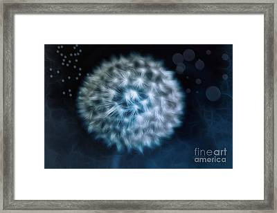 Lullaby For The Moon Framed Print by Jutta Maria Pusl