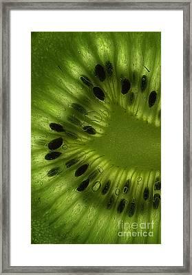 Macro Kiwi Slice Framed Print by Janeen Wassink Searles