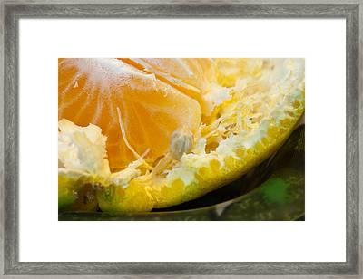 Macro Photo Of Orange Peel And Pips And Main Fleshy Part Framed Print by Ashish Agarwal