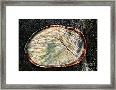 Magical Tree Stump Framed Print by Mariola Bitner