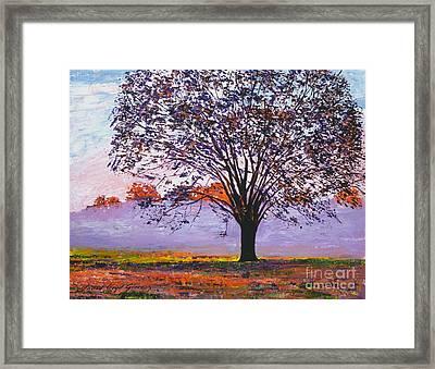 Majestic Tree In Morning Mist Framed Print by David Lloyd Glover