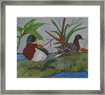 Mallards Framed Print by Tommy Combs
