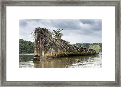 Mallows Bay Ship Graveyard - Maryland Framed Print by Brendan Reals