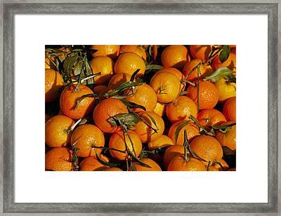 Mandarins Framed Print by Joana Kruse