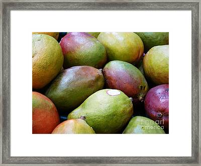 Mangoes Framed Print by Methune Hively