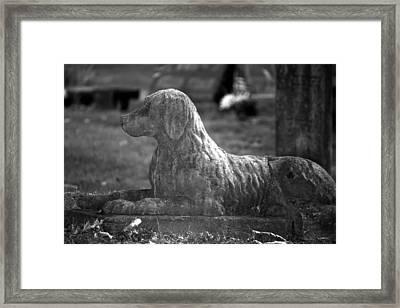 Mans Best Friend Framed Print by Penny Hunt