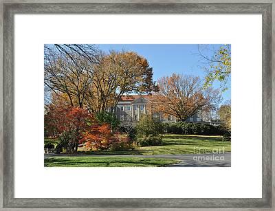 Mansion In The Woods Framed Print by Denise Ellis