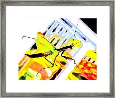 Mantis Framed Print by Xn Tyler