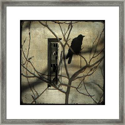 Many Shadows Framed Print by Gothicolors Donna Snyder