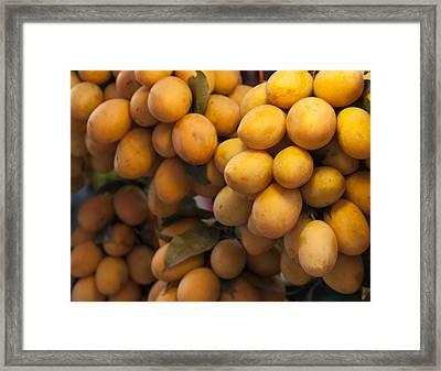 Market Mangoes Framed Print by Zoe Ferrie
