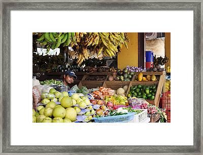 Market Vendor Framed Print by Li Newton