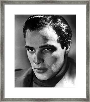 Marlon Brando, 1950s Framed Print by Everett