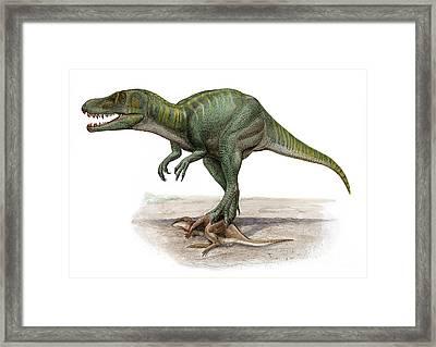 Marshosaurus Bicentesimus Framed Print by Sergey Krasovskiy