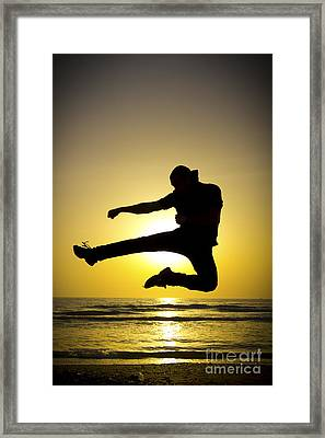 Martial Arts Silhouette Framed Print by Guy Viner