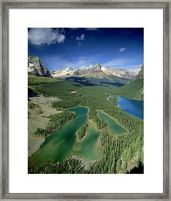 Mary Lake And Lake O Hara, Yoho Framed Print by David Nunuk