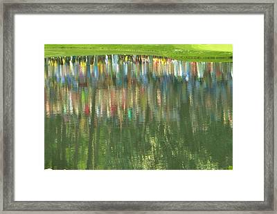 Master Reflection Framed Print by Sharon Farris