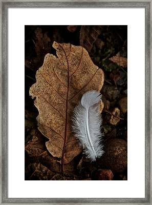 May To October Framed Print by Odd Jeppesen