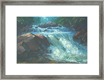 Mcdonald Brook Rapids Framed Print by Len Stomski