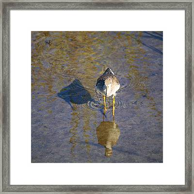 Me My Shadow And The Other Guy Framed Print by Roena King