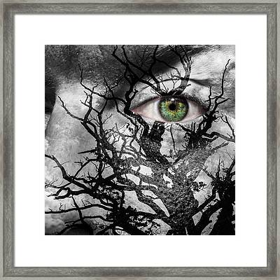 Medusa Tree Framed Print by Semmick Photo