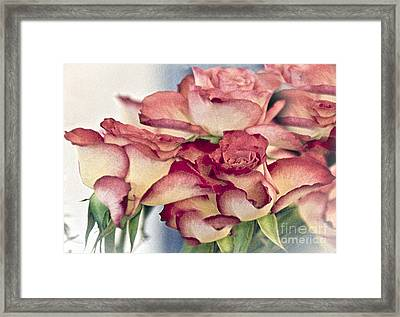 Melody Framed Print by Sheila Laurens