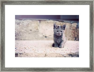 Melts Your Heart Framed Print by Happykiddo Photography
