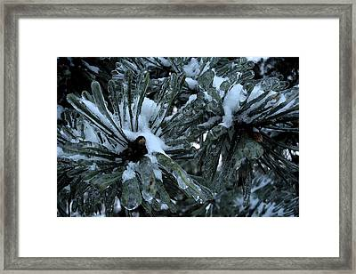 Memories In Ice Framed Print by Yvonne Scott