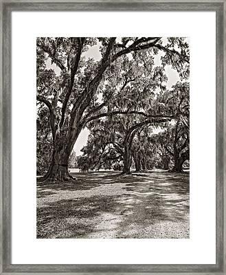 Memory Lane Monochrome Framed Print by Steve Harrington