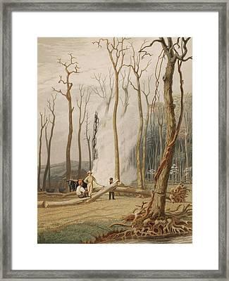 Men Cutting And Burning Girdled Tree Framed Print by Everett