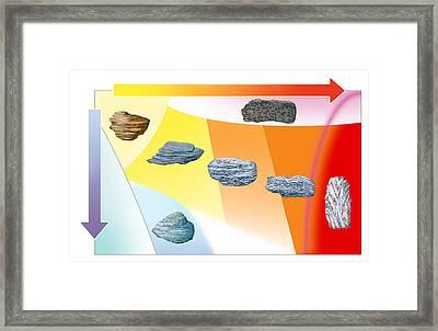 Metamorphic Grades, Illustration Framed Print by Gary Hincks