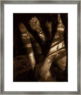 Midnight Mantis Framed Print by Fine Art  Photography