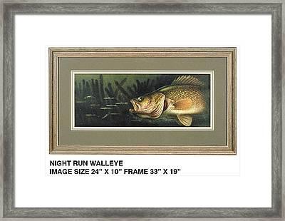 Midnight Run Walleye Framed Print by JQ Licensing