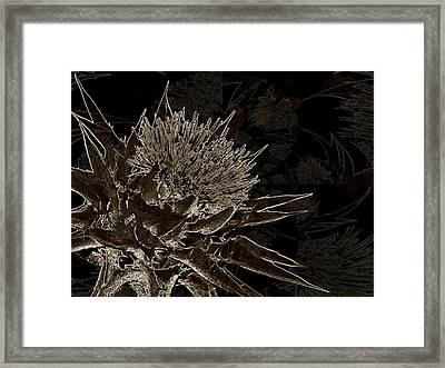 Milk Thistle In Sepia Framed Print by Shirley Sirois