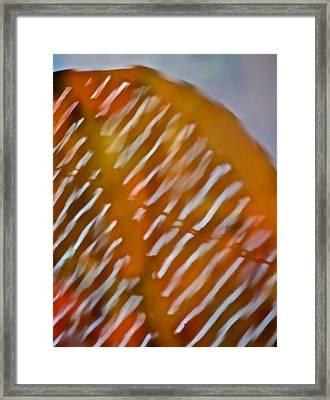 Mirage Framed Print by Odd Jeppesen