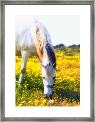 Mirage Framed Print by Stelios Kleanthous