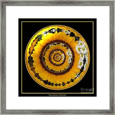 Mirrored Sunflower Under Glass Framed Print by Rose Santuci-Sofranko