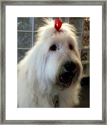 Miss Daisy May Framed Print by Karen Wiles