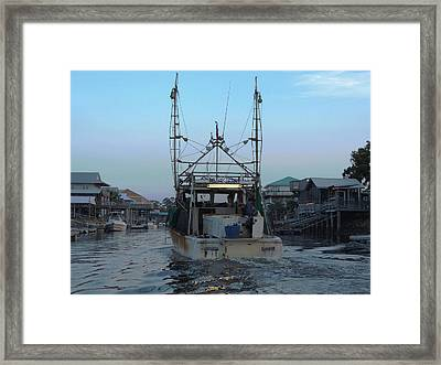 Miss Jerry's Framed Print by Marilyn Holkham
