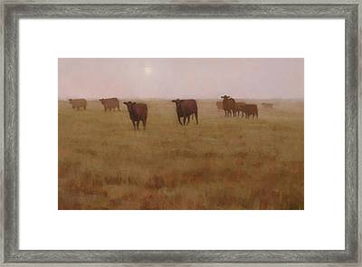 Missouri Morn Framed Print by Brian Freeman
