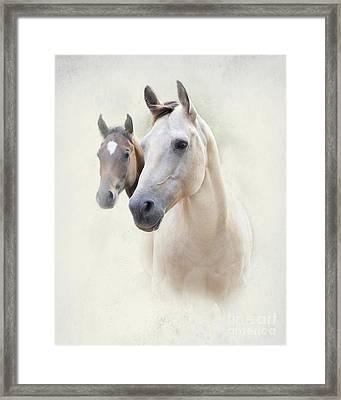 Misty Framed Print by Betty LaRue