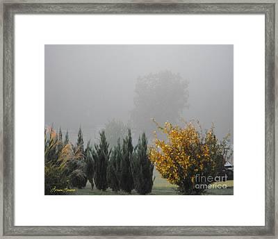 Misty Fall Day Framed Print by Lorraine Louwerse