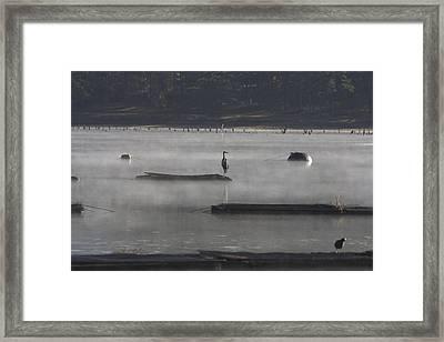 Misty Morning At Lake Wilhelmina Framed Print by Douglas Barnard