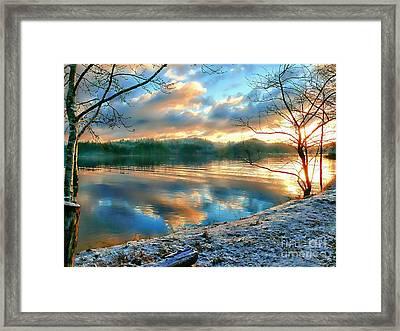 Misty Morning Framed Print by Gail Bridger
