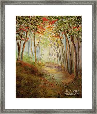 Misty Path Framed Print by Vic  Mastis
