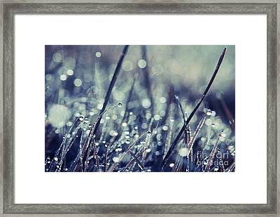 Mondo 02 - S03b Framed Print by Variance Collections