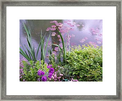 Monet Garden Giverny France Framed Print by Chitra Ramanathan