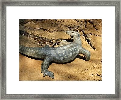 Monitor Lizard At Saint Louis Zoo Framed Print by David Edwards