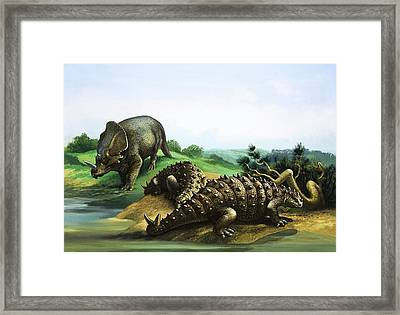 Monoclonius And Scolosaurus Framed Print by English School